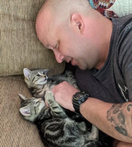 Kitten Heaven!